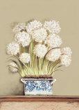 Flor Sopera I