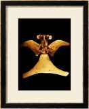 gold pectoral 1200 1400 ad