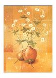 Florido I