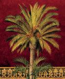 Canary Palm
