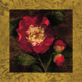 Red Camellias I