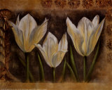 Triple Tulip I