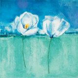 Fleurs d'Azur II