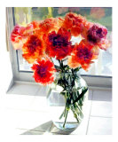Mixed Carnations in Window