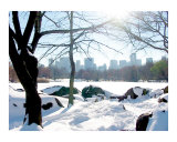 Central Park Snow  Lake and Manhattan Skyline