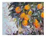 Janet's Oranges