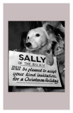 Sally Looks For a Home