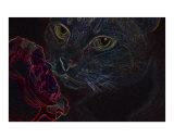 Vibrant Black Light Kitty