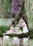 Swans Picnic