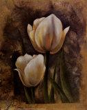 Twin Tulip II