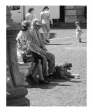 Elderly Couple with Dog - Piazza Navona