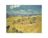 The Wheat Field  c1888
