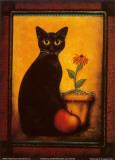 Framed Cat II