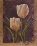 Twin Tulip I