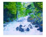 McKinney Rubicon Creek