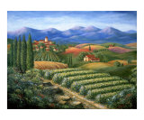 Tuscan Vineyard and Village