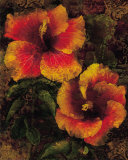 Hibiscus I