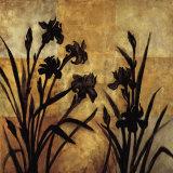 Iris Silhouette I