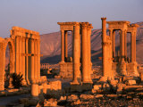 Columns of Ruins at Dawn  Palmyra  Syria