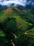 Rice Terraces Around Banaue  Banaue  Philippines