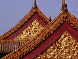 Roof Detail of Beijing's Forbidden City Bejing  China