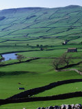 Green Dales and Traditional Stone Walls  England