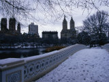 Central Park in Winter  New York City  New York  USA