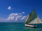 Sailing Boat  Ambergris Caye  Belize