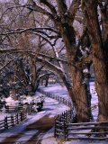 Country Road Leading to Nambe Ranch in Early Winter  New Mexico  USA
