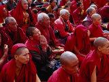 Nuns and Monks at Dalai Lama Sermon in Choglamsar  Ladakh  India
