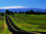 The Saddle Road Connecting East and West Hawaii  with Mauna Loa in the Distance  Hawaii  USA