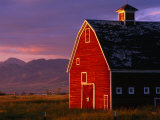 Spring Sunshine on a Barn in Montana  Montana  USA