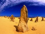 The Pinnacles  Pinnacles Desert  Australia