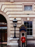 Guard at Buckingham Palace  London  England