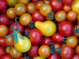 Tomatoes from Ballymaloe Cooking School  Shanagarry  Ireland