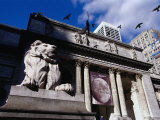 Stone Lions on Fifth Avenue Entrance to the New York Library  New York City  New York  USA