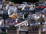 The Rooftops of Seville  Andalucia  Sevilla  Spain