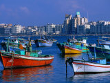Harbour View with Fishing Boats  Alexandria  Egypt