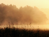 Morning Mist  Lake Vattern  Jonkoping  Sweden