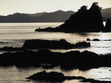 Lone Fisherman on Rocks at Sunrise in Russell  Bay of Islands  Northland  New Zealand