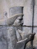 Bas-Relief of the Arrival of the Medes on Apadana Staircase  Persepolis (Takht-E Jamshid)  Iran