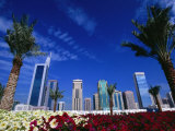 Skyline with Flowers in Foreground  Shiek Zayed Rd  Dubai  United Arab Emirates