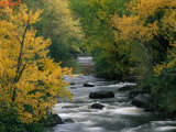 Autumn Colours on the Banks of the Rue River  Quebec  Canada