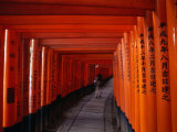 Traditional Torii with Inscription at Fushimi Inari Shrine Near Kyoto  Kyoto  Kinki  Japan