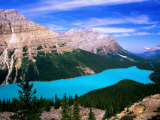 Overhead of Peyto Lake and Mountains  Summer  Banff National Park  Canada