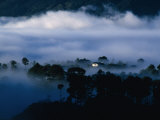 Low Cloud Surrounding House Within Forest  Sagada  Mountain  Philippines  Ilocos