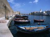 Boats Moored in Harbour  Bizerte  Bizerte  Tunisia