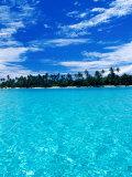 Motu (Islet) in Lagoon  French Polynesia