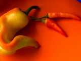 Chilli Peppers in Varying Shades on an Orange Plate  Australia