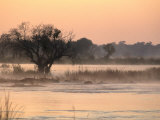 Early Morning Mist Rises off the Zambezi River  Zambezi National Park  Matabeleland North  Zimbabwe